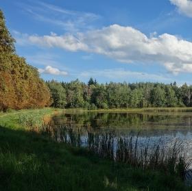 Vojenský rybník