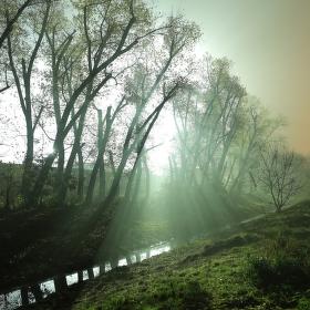 Modla v sukni mlhy
