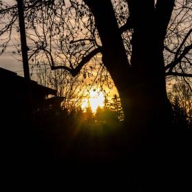 Západ slunce v černi
