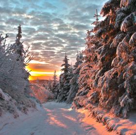 ranní svit