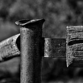 Starý plot...