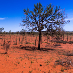 Krajina Anangů