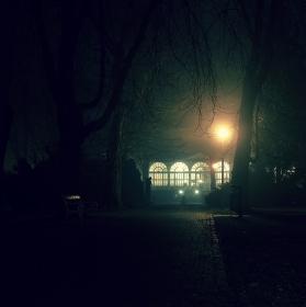 Večerní procházka lazeňským parkem.