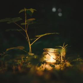 Kotlík světla