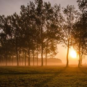 Dnešni ranní světlo