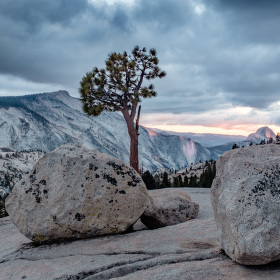 Olmsted Point | Yosemite