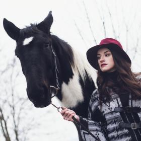 Nikol   Equus Bohemia