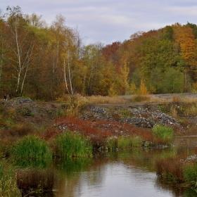 sušanský rybník-podzim mu sluší