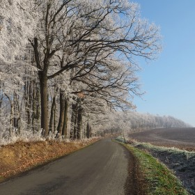 Cesta mrazivým dnem