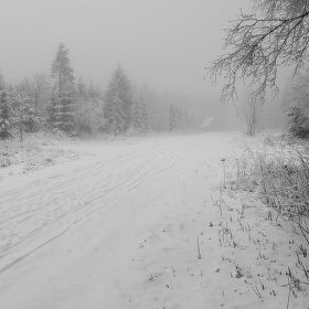 Parádní zimní