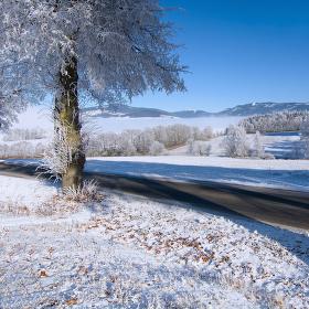 ... zima pod Sněžníkem