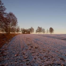 Fialový sníh