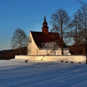 Pes a kostelík u hradu Veveří....