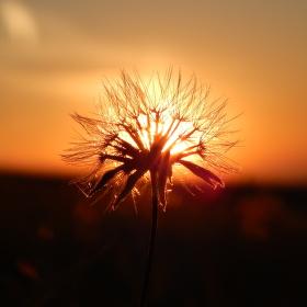 Slnko svieti na všetkých rovnako