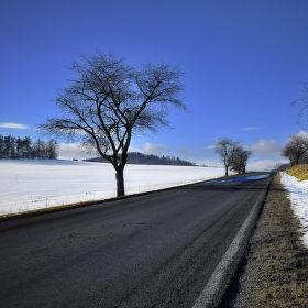 Cesta....