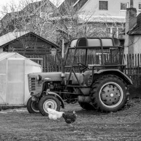 Vesnický dvorek