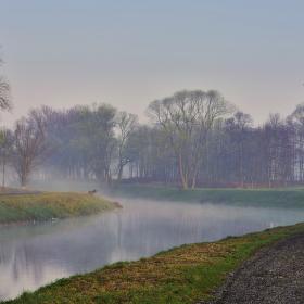 Ráno u řeky
