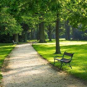 cesta parkem...
