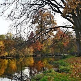 Podzim u Janohradu