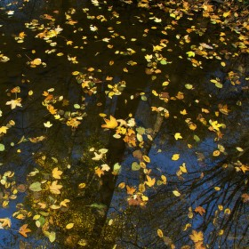 Zrcadlo podzimu