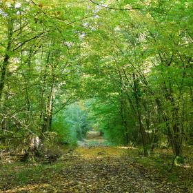 Brána podzimu