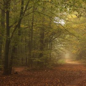 Podzimní klikatou cestou