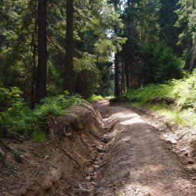 Cesta na Skorušinu