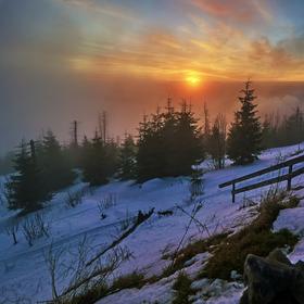Mlha přichází