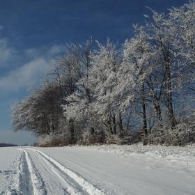 zimní cestou...