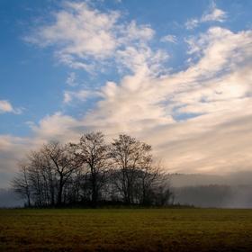 Svítání z mlhy
