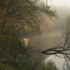 Podzim u jedné řeky
