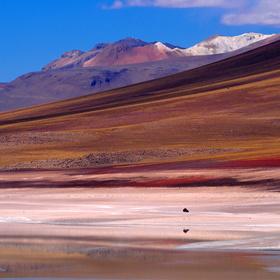 Barevné Altiplano (2)