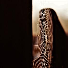 Zbav se všeho co Tě tíží.Stoupej vzhůru ke svým snům.Duše Tvá jede zdviží...Pohlédni v zrcadlo života s nadějí...Bez Tvého přání se zázraky nedějí...