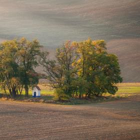 Kaplička sv. Barbory s lehce podzimem barvícím se akátovým remízkem v polích