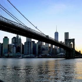 N.Y. 4