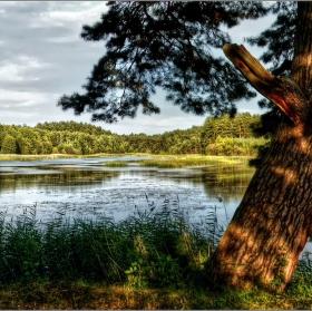 Panorama od Hradčanských rybníků