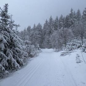 Když sněžilo