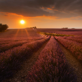 Večerní Provence