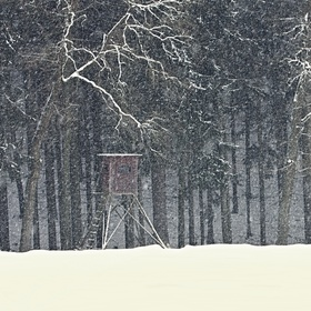 Krajina bílého ticha