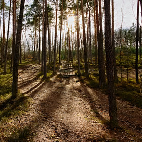 Les Máchova kraje