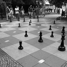 majstrovstvá v šachu...