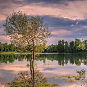Vyliaty rybník II