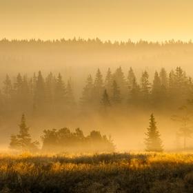 Šumavské ráno