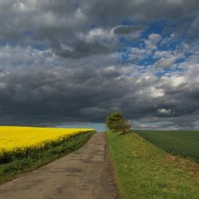 Cesta do nebes...
