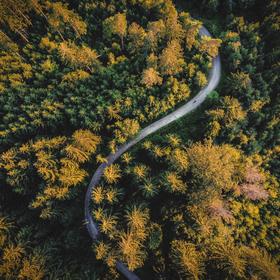 Cestou v Beskydech