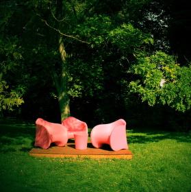 Růžové posezení