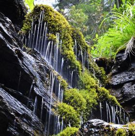 Mini vodopád na Bílé Opavě