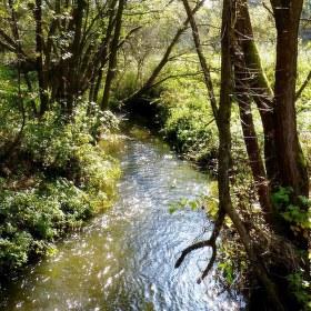 ...u potoka...