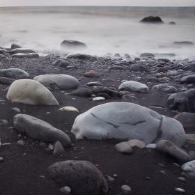 Černobílá pláž