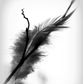 Andělská indicie